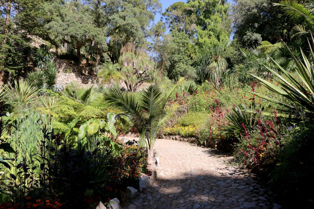 Jardins du Palais de Monserrate