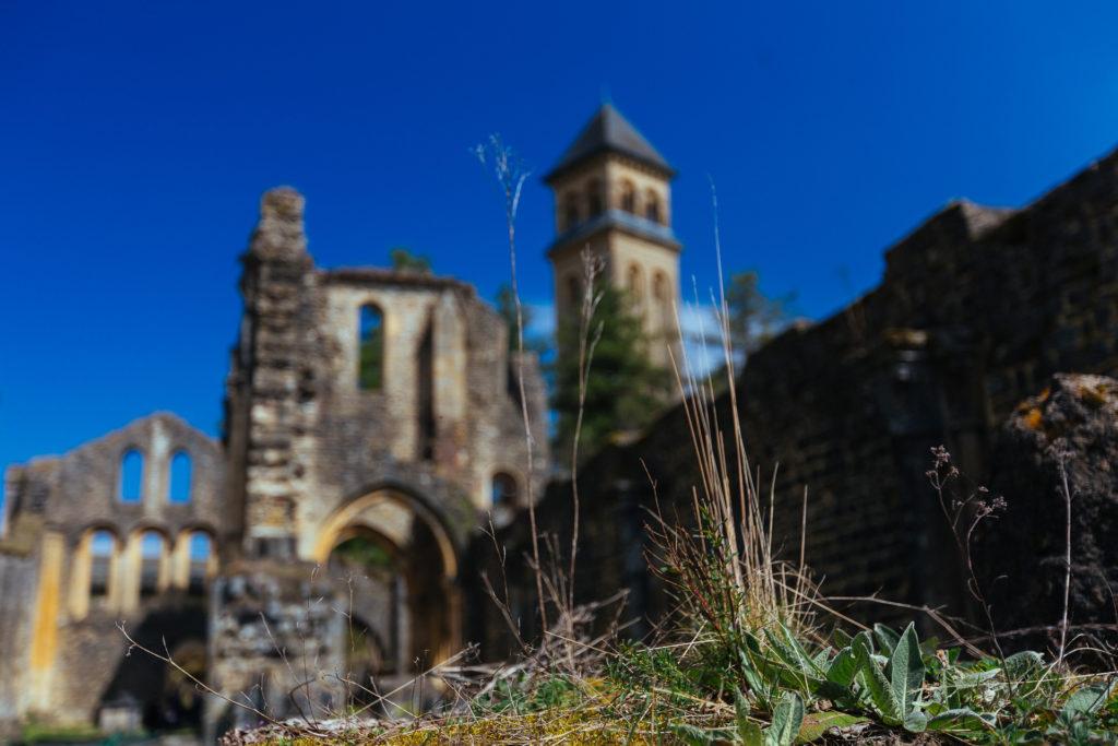 Ruines de l'abbaye d'Orval, Belgique