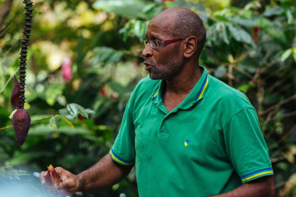 Joel Vanibel, Domaine Vanibel, Guadeloupe