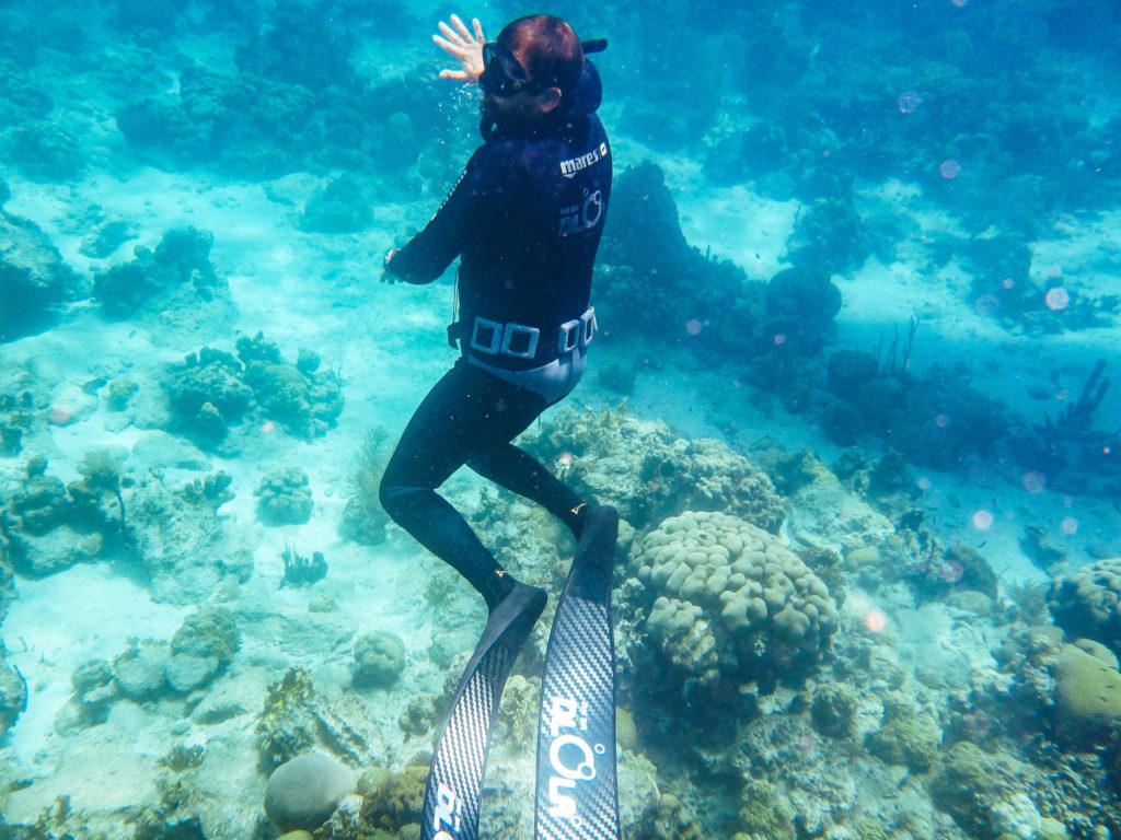 Snorkeling dans la réserve Cousteau, Guadeloupe