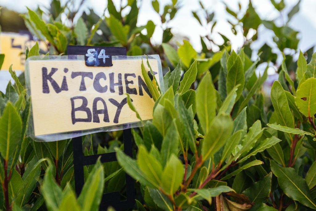 Kitchen Bay, Battersea Park Food Festival