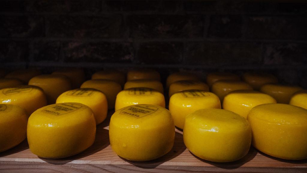 Gouda, Amsterdam Cheese Company