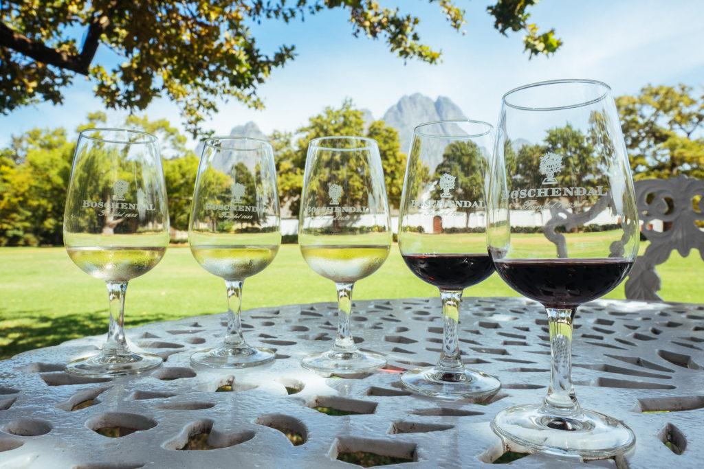 Dégustation de vins au domaine de Boschendal