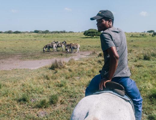 Sigu, Bhangazi Horse Safari