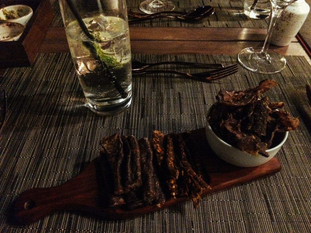 Biltong and Gin Tonic, South Africa