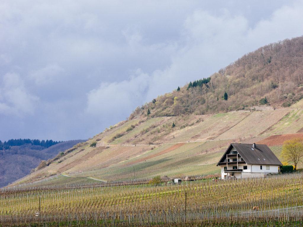 Beilstein landscape