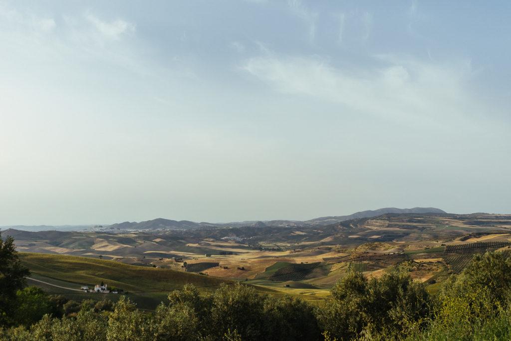 Paysage d'Acinipo à proximité de Setenil de Las Bodegas