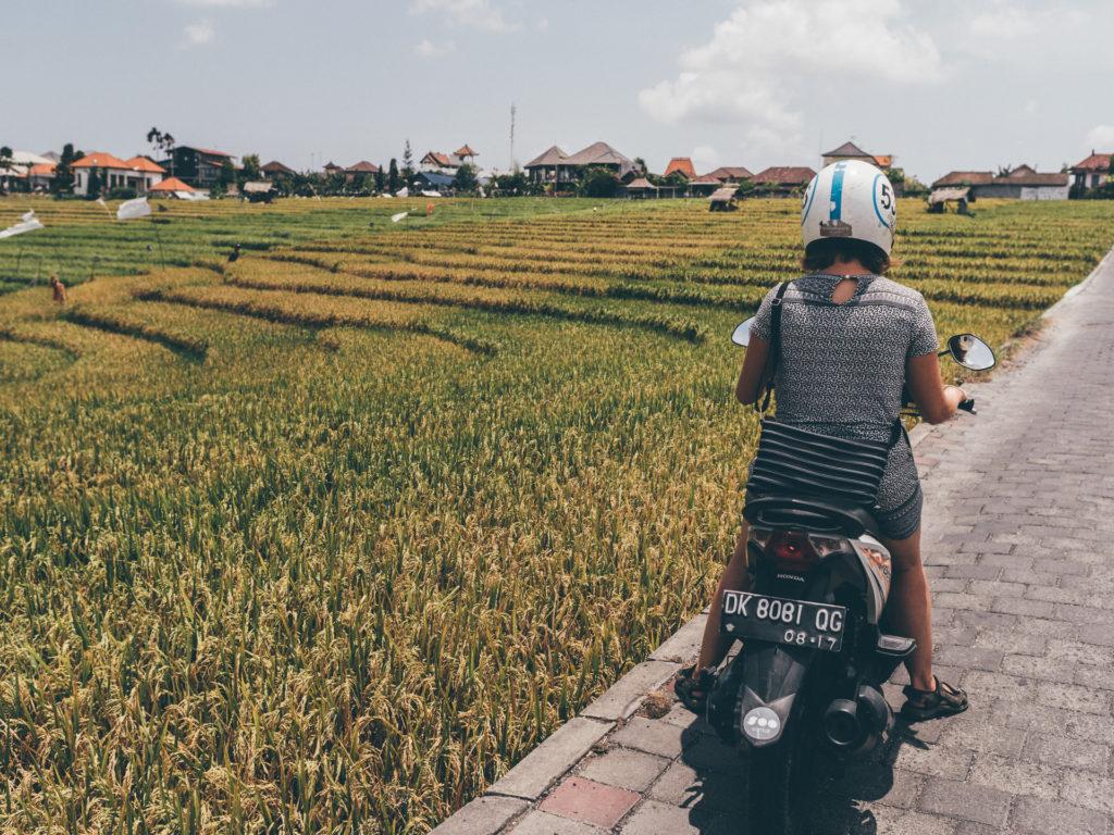 Le shortcut, Canggu, Bali