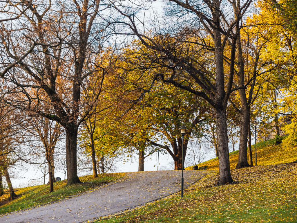 Park with the autumn colors, Stockholm