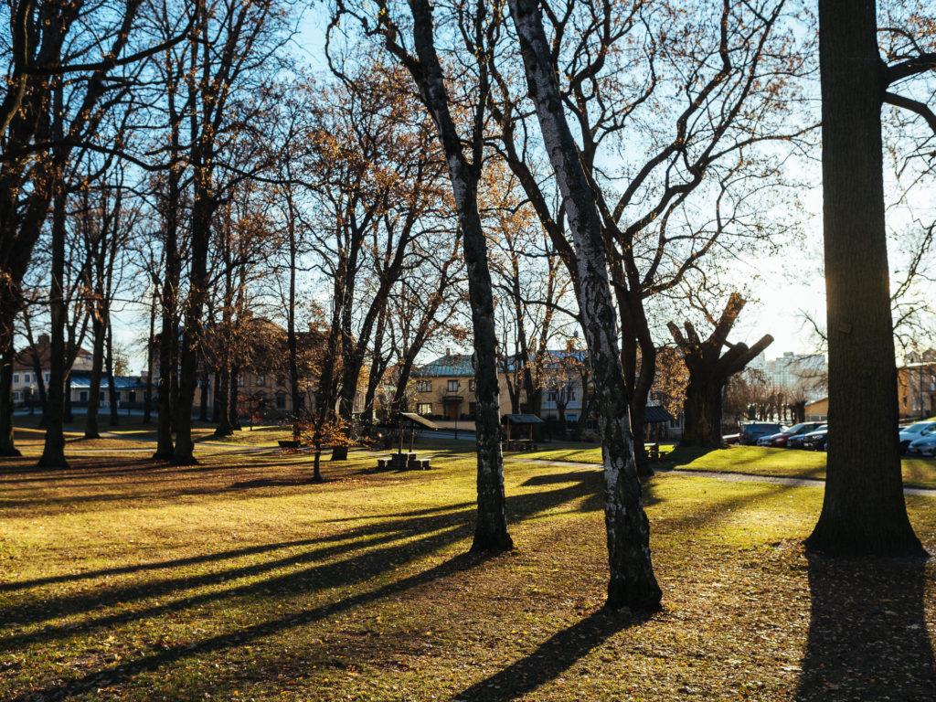 Park near Skansen, Stockholm