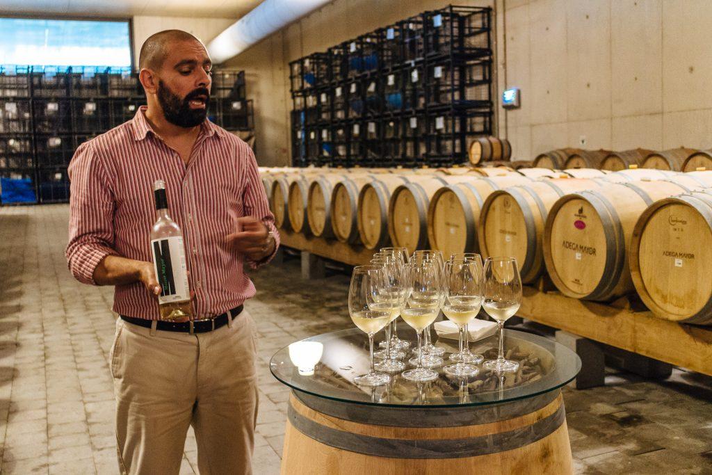 Dégustation de vin, Adega Mayor