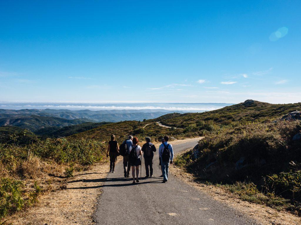 Sur la route du mont Foia