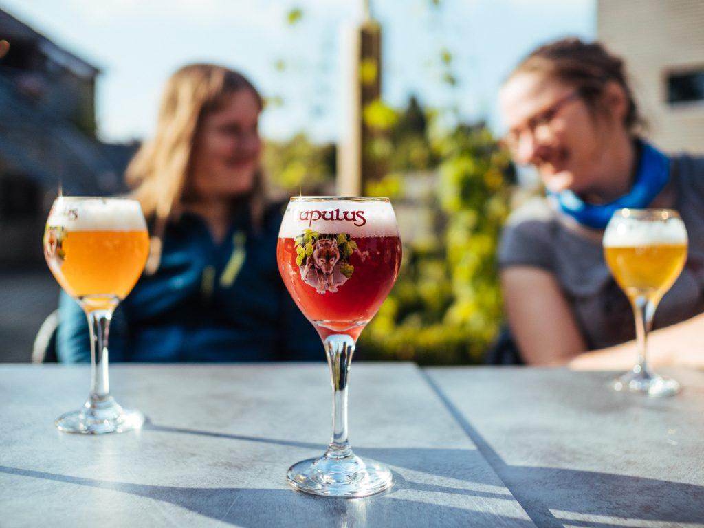 Dégustation de bière Lupulus