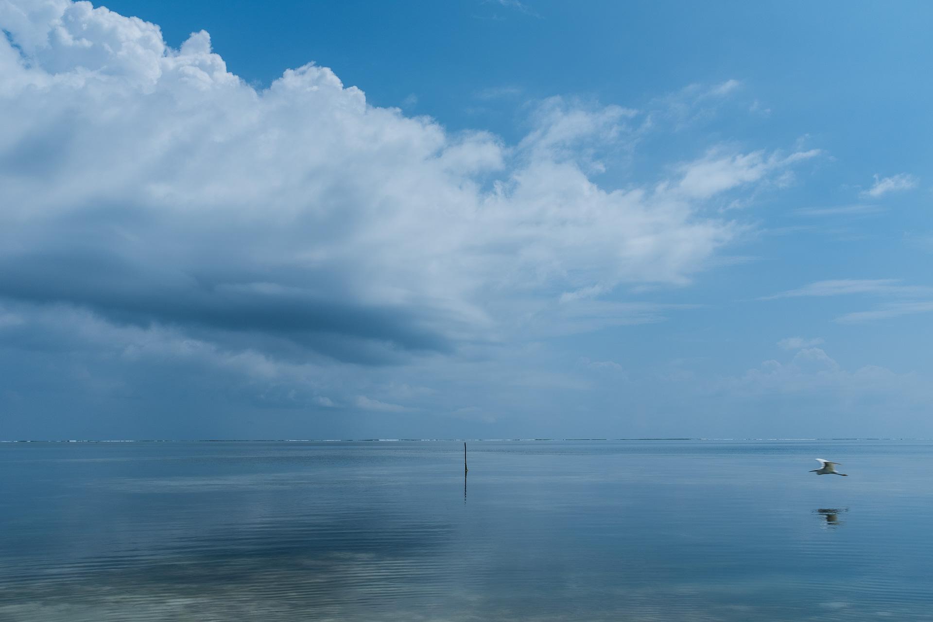 Semaines L'île Planet 2 Épices Zanzibar Yummy Aux Sur 4w7gqFF1H