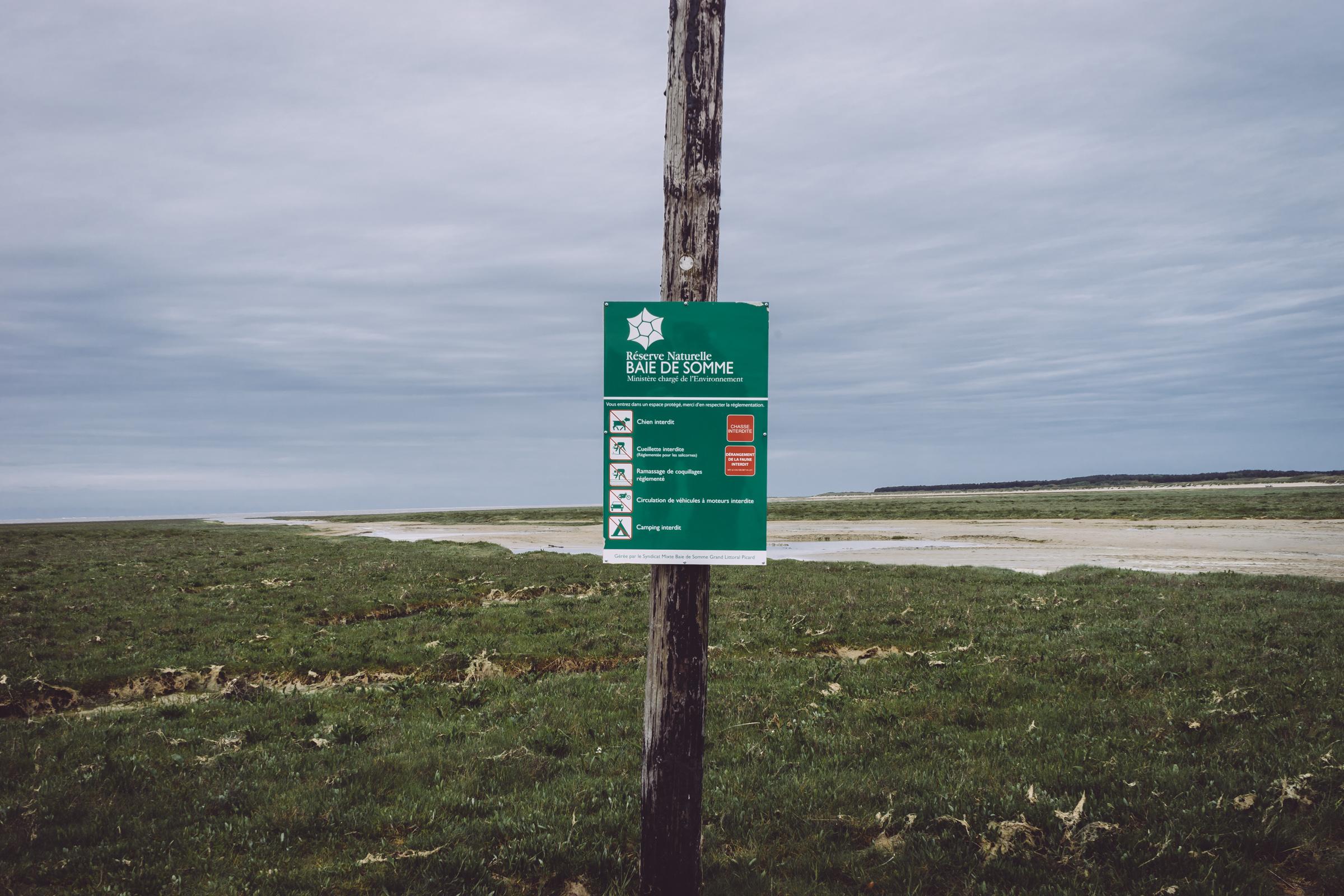 La réserve naturelle de la Baie de Somme