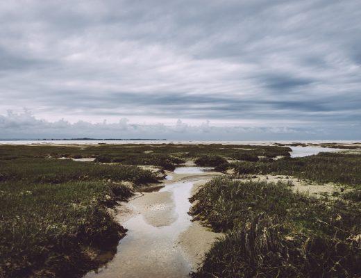 Paysage de Baie de Somme