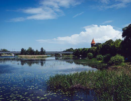 Aux abords de la forteresse teutonique de Marienbourg - Pologne
