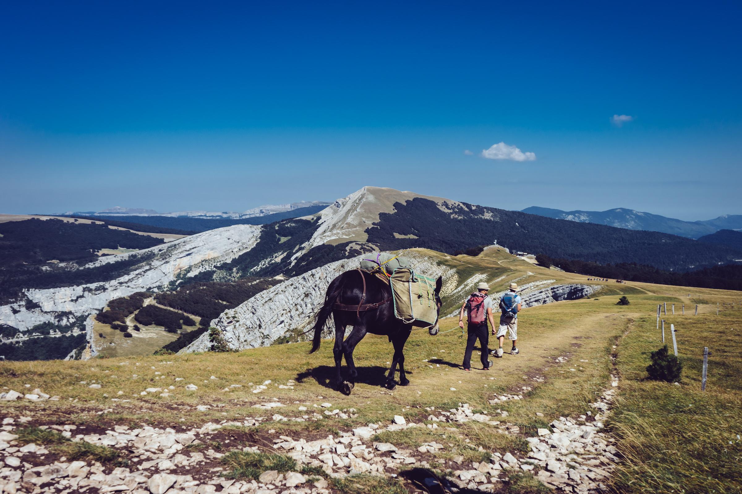 Randonnée sur les hauts plateaux du Vercors