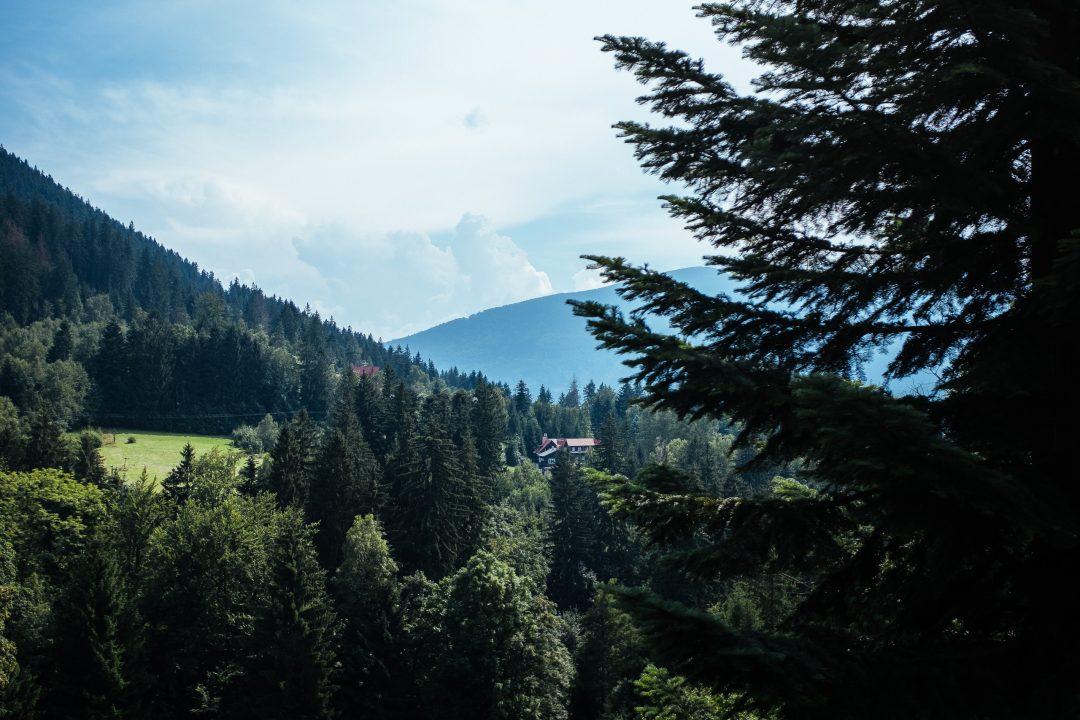 rencontres en ligne République tchèque nouvelle Amérique gratuit sites de rencontre